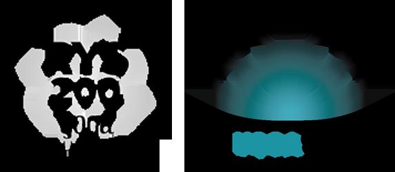 Sky Yoga Teacher Training School Registered Yoga School Rys With Yoga Alliance Sky Fitness Center In Buffalo Grove